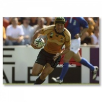 Matt Giteau Signed Photograph